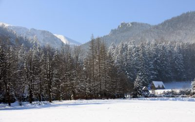 Zakopane zimą? Jakie szlaki są dobre dla początkujących?