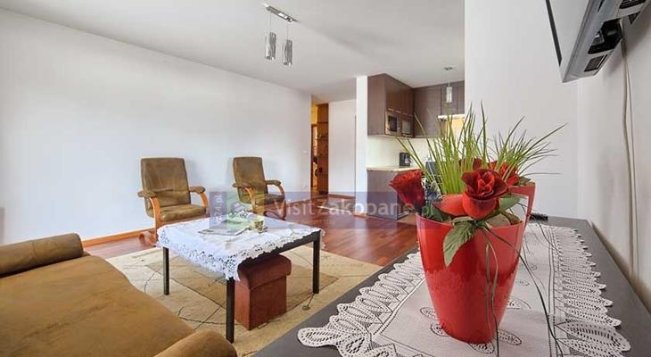 Apartamenty Zakopane - Apartament TULIPAN - Zakopane